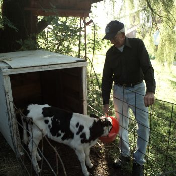 Family Farmers Respond to Dairy Industry Milk Supply Proposal, Urge Changes